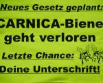 Hildegardkirchtag 2019